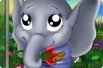 Baby elefante