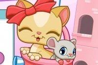 Caramelle dei gatti