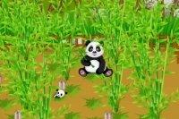 Panda Farm