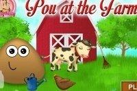 Pou alla fattoria