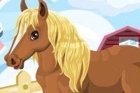 Teneri Pony