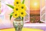 Vaso e fiori