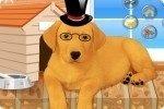 Vesti il cagnolino 2
