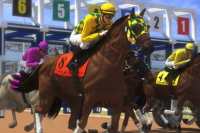 Corse di Cavalli 2
