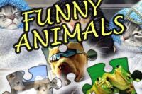 Puzzle Divertente - Animali